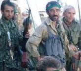 Видео Чеченские Боевики И Их Уничтожение